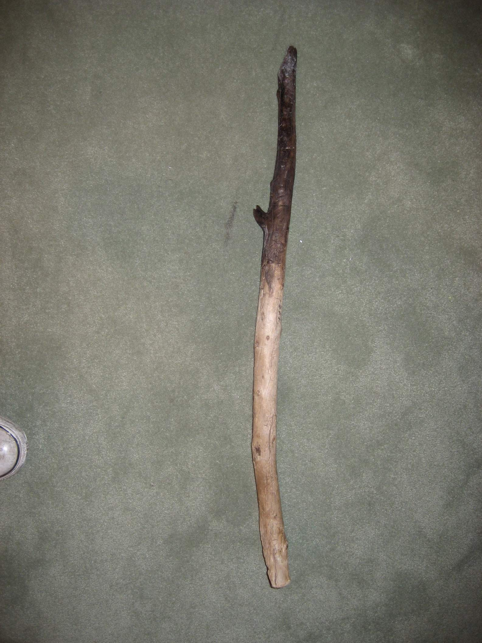 camping stick from Yellowstone